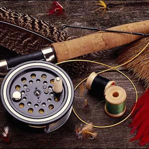 Охотничьи и рыболовные магазины Новоржева