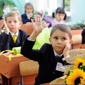 Школы Новоржева